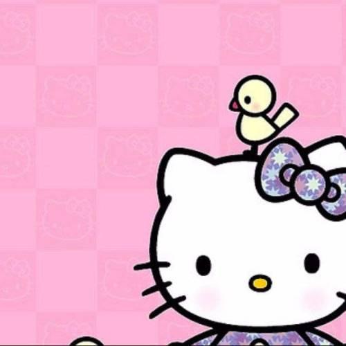 hello kitty pink bird